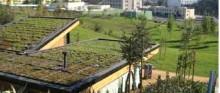 بام خنک برای صرفه جویی انرژی در ساختمان ها