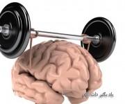 تقویت مغز ذهن برتر