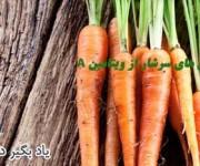 خوراکی های سرشار از ویتامین آ
