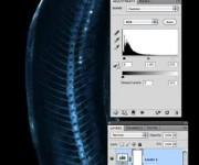 ایکس ری در فتوشاپ