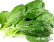 خوراکی های سرشار از آهن
