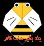 زنبور کاغذی