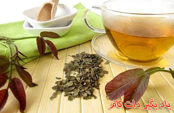 دم کرده برگ گردو مفید برای پوست و مو