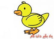 نقاشی مرغابی