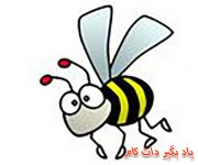 نقاشی زنبور