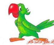 آموزش نقاشی طوطی برای کودکان