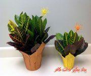 گلهای آپارتمانی _ درباره گل کروتون (کرچک هندی) بیشتر بدانید