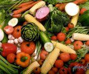 رهنمودهای غذایی برای لجن صفراوی
