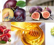 خواص و درمان برخی میوه ها از کلام امام رضا (ع)