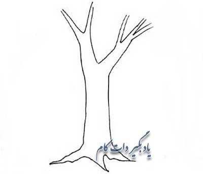آموزش مرحله به مرحله درخت
