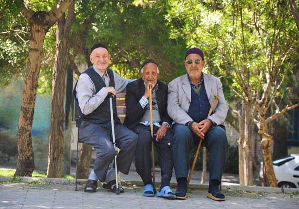 مردان سالمند ایران