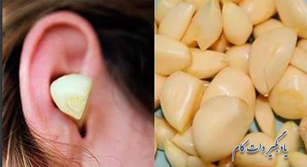اثر شگفت انگیز سیر در تسکین گوش درد