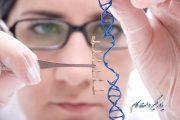 نخستین دستکاری ژنتیکی در بدن یک بیمار