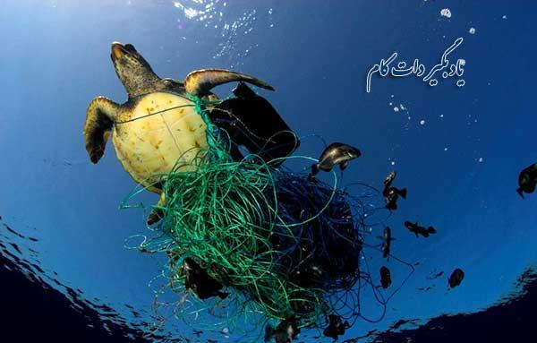 تولید پلاستیک باید کاهش یابد