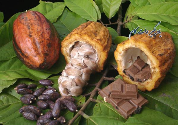 منابع شکلات سازی دنیا