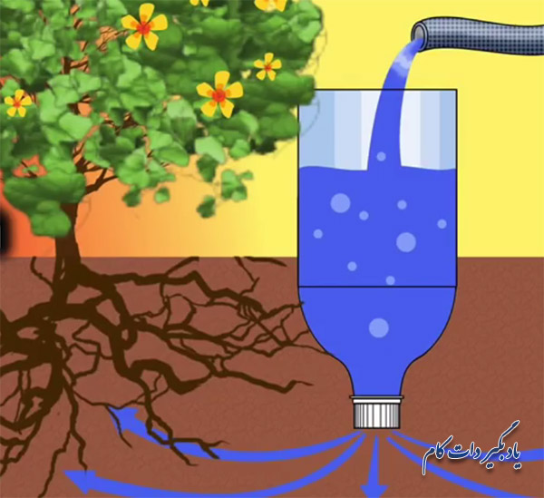 راهکارهای آبیاری گیاهان زمانی که در سفر هستید