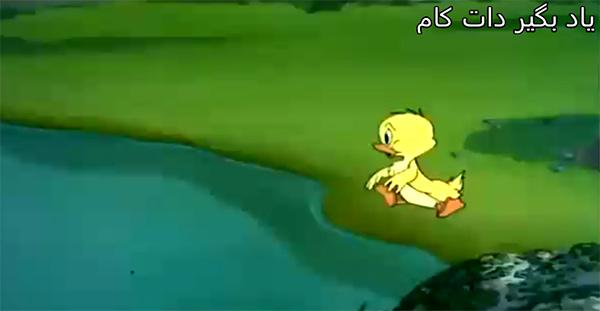 کارتون کوتاه تام و جری- جوجه اردک