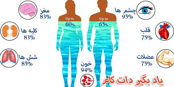 بدون آب چقدر زنده می مانید؟