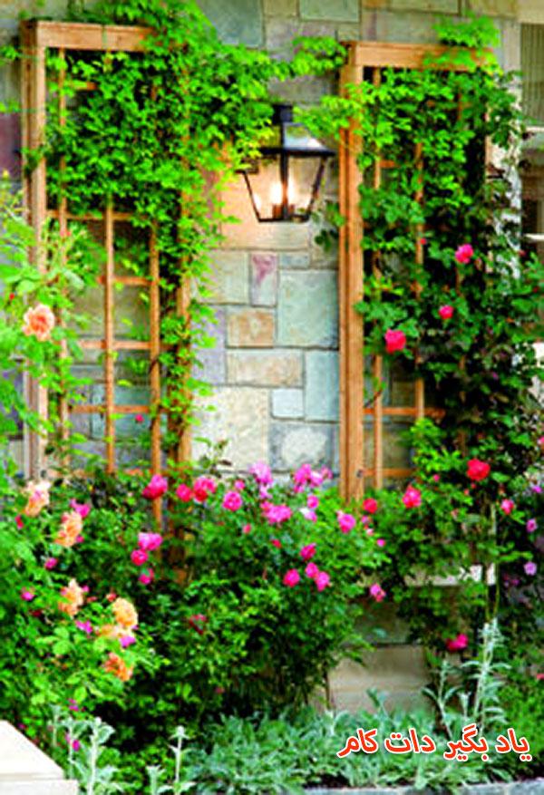 قاب چوبی برای گیاهان رونده