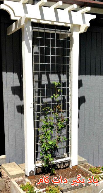 داربست برای سبزیجات