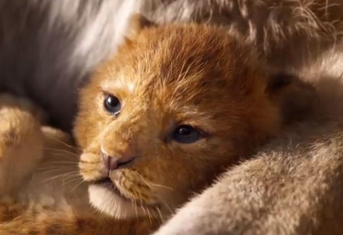 تریلر آخرین فیلم شیر شاه