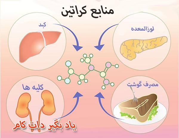 منابع کراتین در بدن