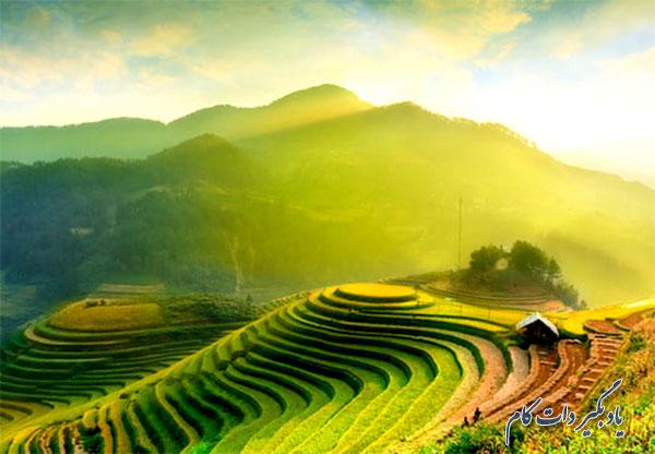سبز یوفو محبوب ترین رنگها در عکاسی2019