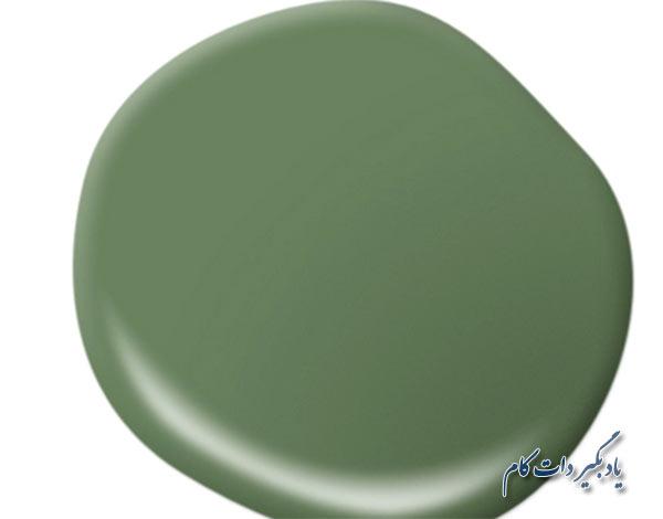 رنگ ورودی و راهرو های کوچک (کفش کن): سبز مگنولیایی