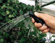 تمیز کردن گیاهان آپارتمانی