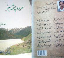 اشعار هاشم ناصری