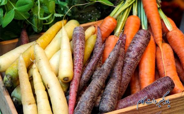 هویج را در چه فصلی باید کاشت؟