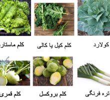 سبزیجاتی که در بهار کاشته می شوند
