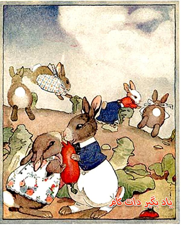 قصه خرگوش های گرسنه