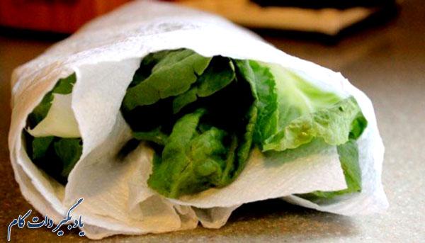 نگهداری کاهو و سبزیجات برای مدت طولانی