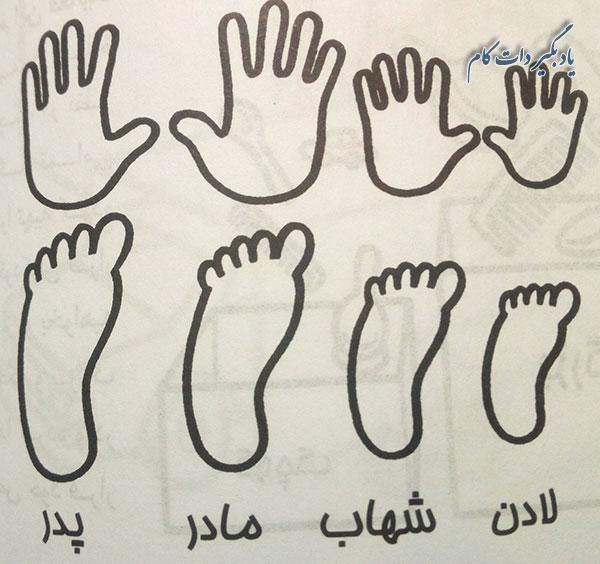 اندازه دست و پاها برای دو ساله ها