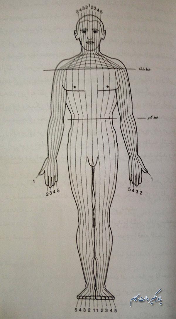 ماساژ درمانی برای نقاط حساس بدن