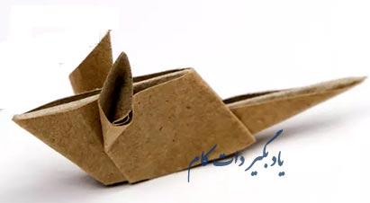 کاغذتای موش تمام بدن